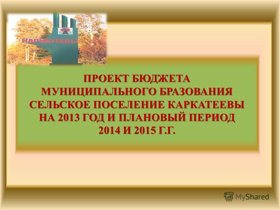 ПРОЕКТ БЮДЖЕТА МУНИЦИПАЛЬНОГО БРАЗОВАНИЯ СЕЛЬСКОЕ ПОСЕЛЕНИЕ КАРКАТЕЕВЫ НА 2013 ГОД И ПЛАНОВЫЙ ПЕРИОД 2014 И 2015 Г.Г.