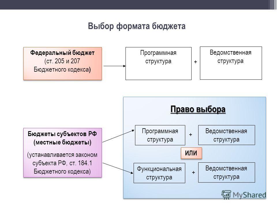 Выбор формата бюджета Федеральный бюджет (ст. 205 и 207 Бюджетного кодекса ) Федеральный бюджет (ст. 205 и 207 Бюджетного кодекса ) Программная структура Ведомственная структура + Бюджеты субъектов РФ (местные бюджеты) (устанавливается законом субъек