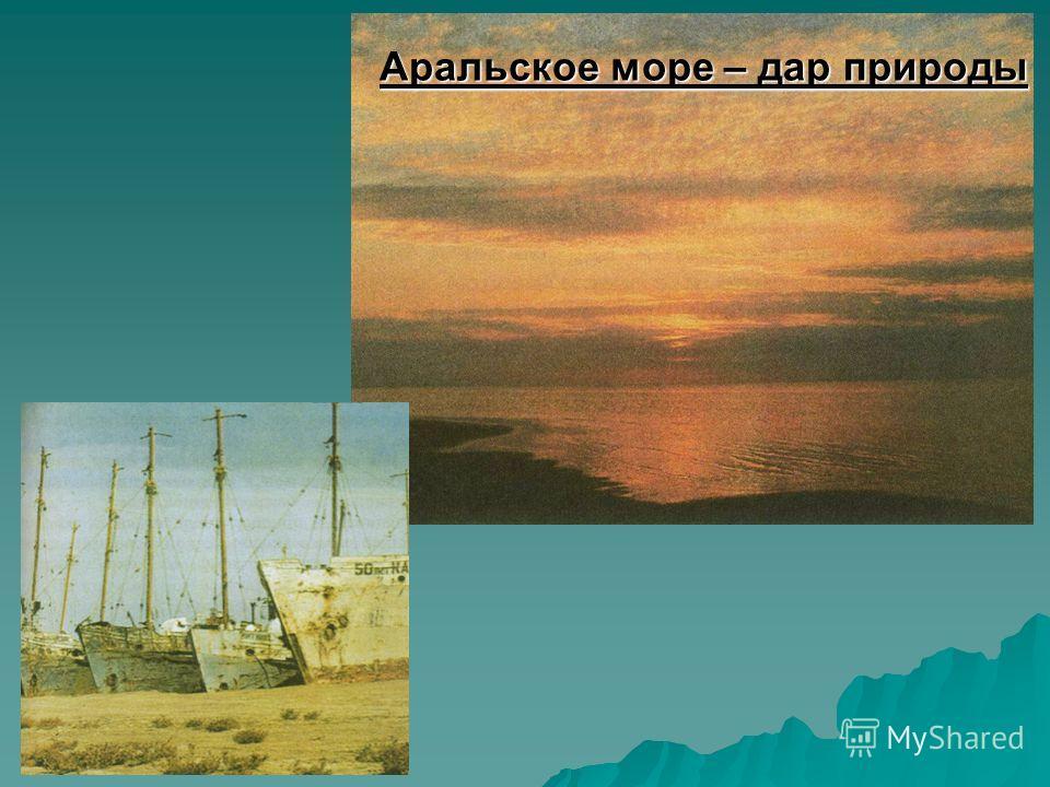 Аральское море – дар природы