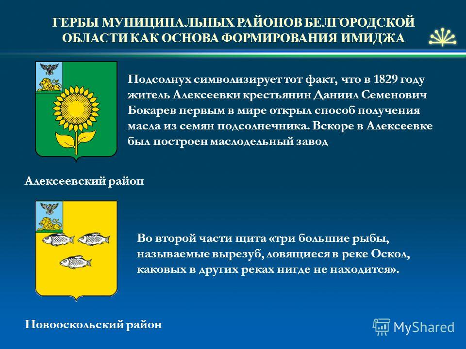 знакомства в алексеевке белгородской области бесплатно без регистрации