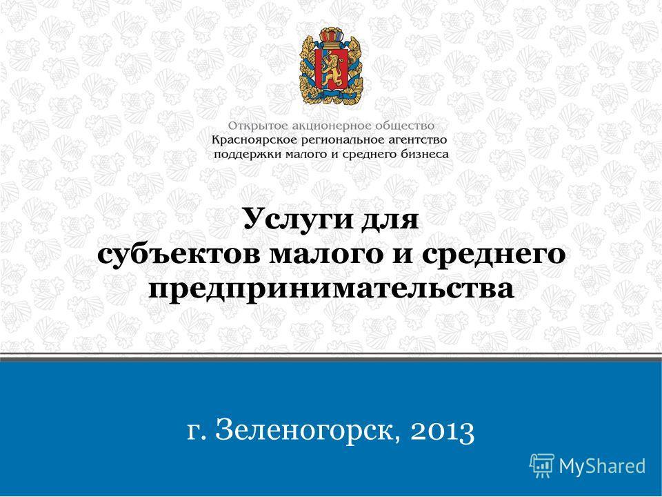 Услуги для субъектов малого и среднего предпринимательства г. Зеленогорск, 2013