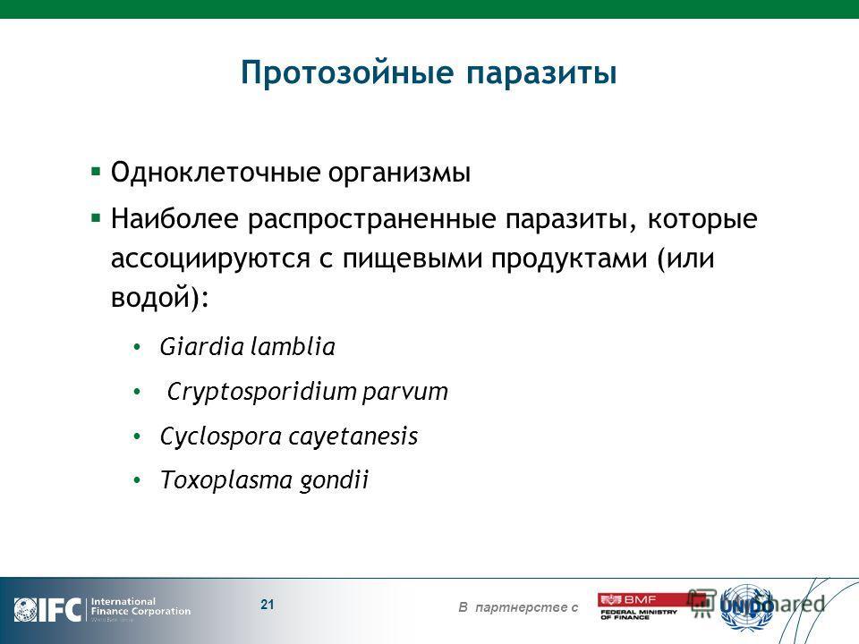 В партнерстве с Протозойные паразиты Одноклеточные организмы Наиболее распространенные паразиты, которые ассоциируются с пищевыми продуктами (или водой): Giardia lamblia Cryptosporidium parvum Cyclospora cayetanesis Toxoplasma gondii 21