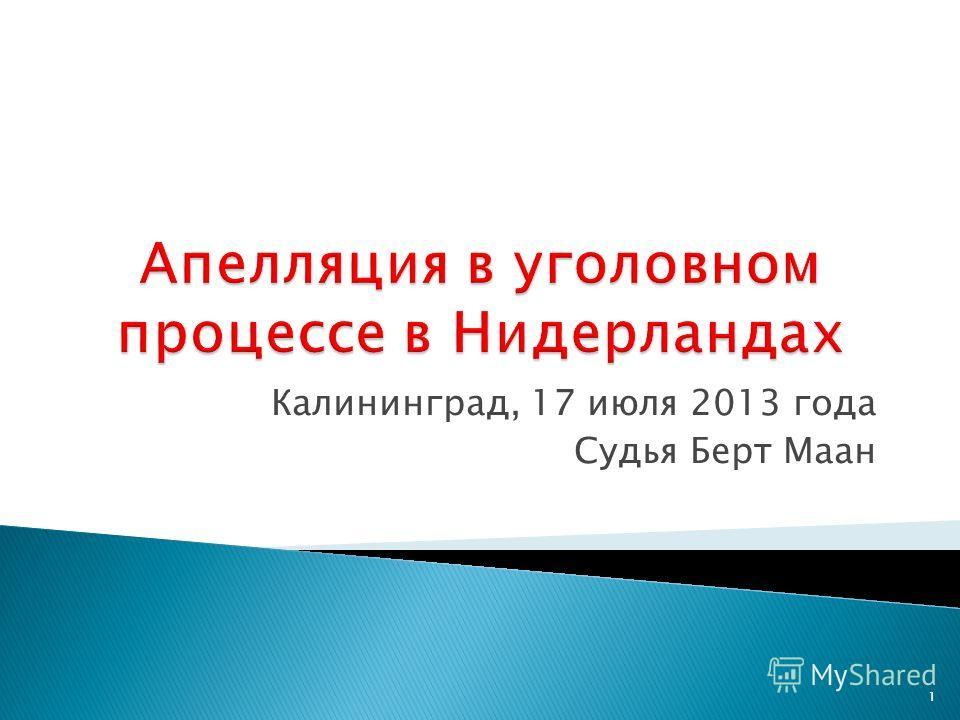 Калининград, 17 июля 2013 года Судья Берт Маан 1