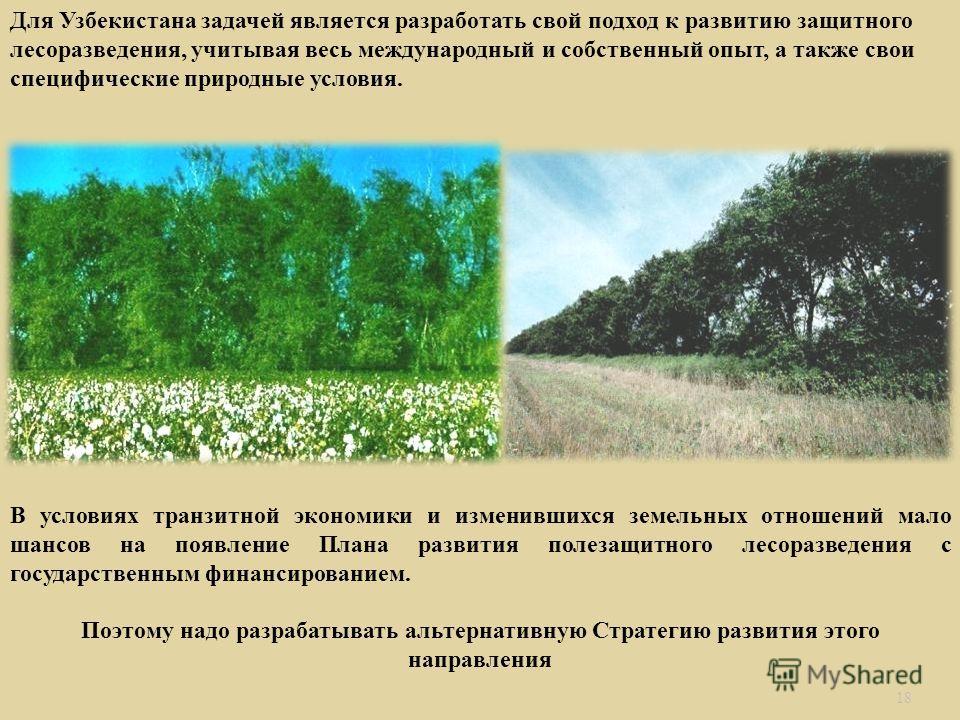 18 Для Узбекистана задачей является разработать свой подход к развитию защитного лесоразведения, учитывая весь международный и собственный опыт, а также свои специфические природные условия. В условиях транзитной экономики и изменившихся земельных от
