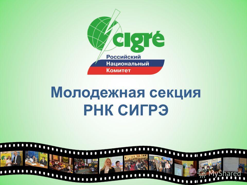 Молодежная секция РНК СИГРЭ