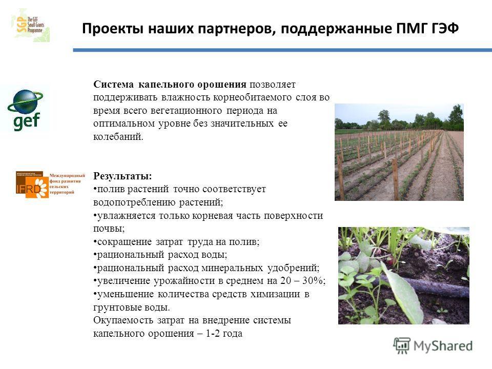 Проекты наших партнеров, поддержанные ПМГ ГЭФ Система капельного орошения позволяет поддерживать влажность корнеобитаемого слоя во время всего вегетационного периода на оптимальном уровне без значительных ее колебаний. Результаты: полив растений точн