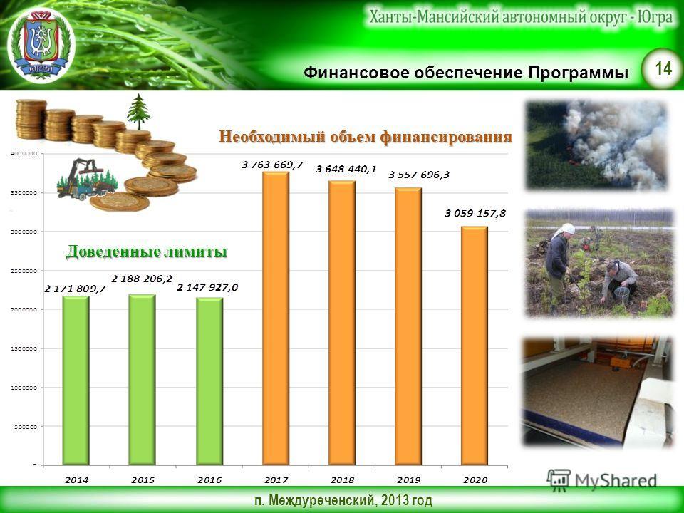 п. Междуреченский, 2013 год 14 Финансовое обеспечение Программы Доведенные лимиты Необходимый объем финансирования