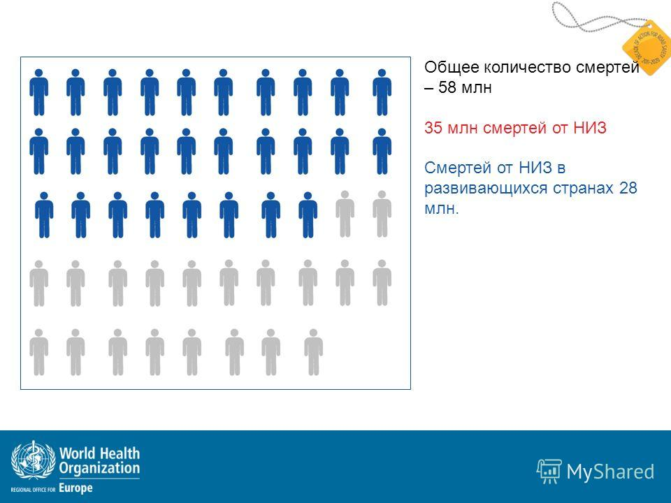Общее количество смертей – 58 млн 35 млн смертей от НИЗ Смертей от НИЗ в развивающихся странах 28 млн.
