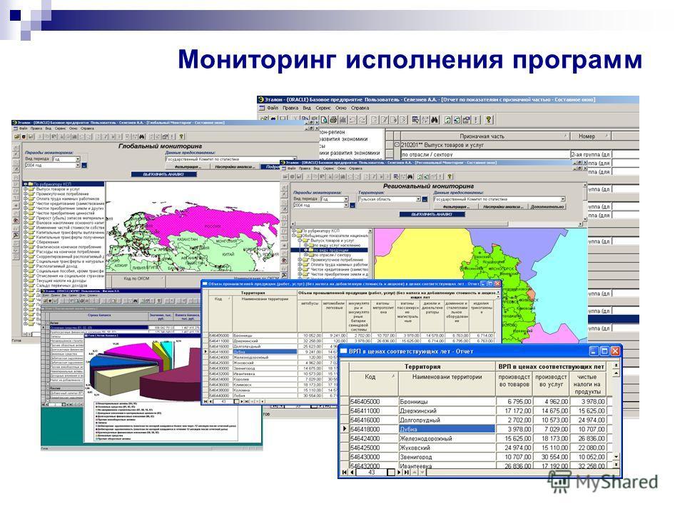 Мониторинг исполнения программ