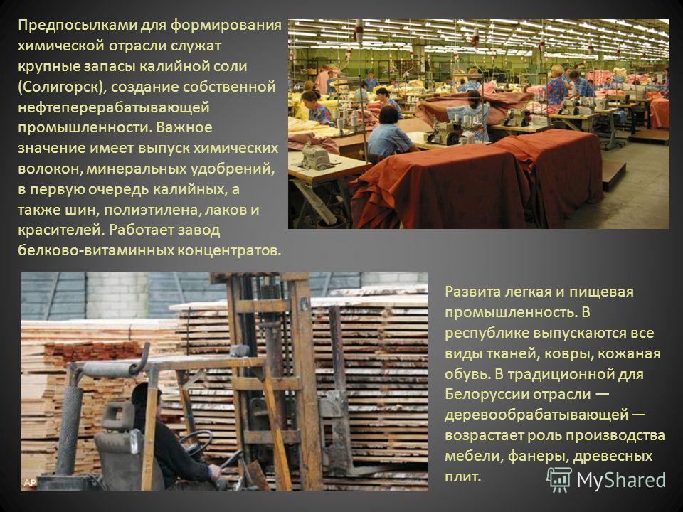 Предпосылками для формирования химической отрасли служат крупные запасы калийной соли (Солигорск), создание собственной нефтеперерабатывающей промышленности. Важное значение имеет выпуск химических волокон, минеральных удобрений, в первую очередь кал