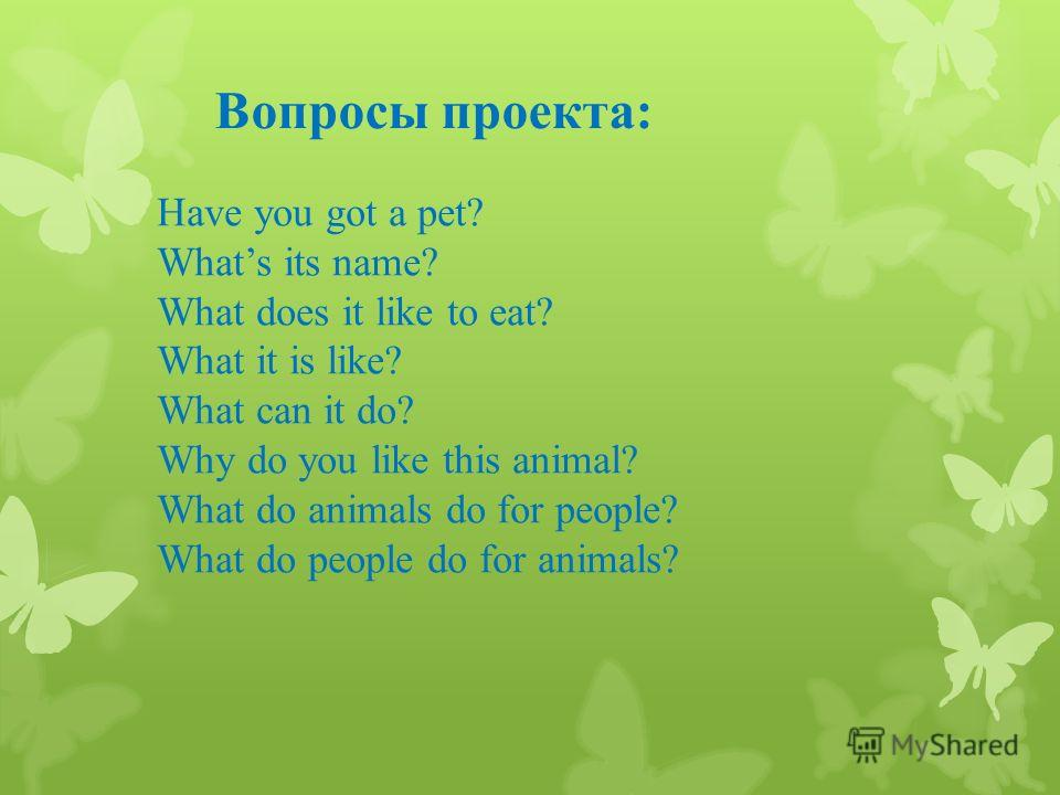 Вопросы проекта: Have you got a pet? Whats its name? What does it like to eat? What it is like? What can it do? Why do you like this animal? What do animals do for people? What do people do for animals?