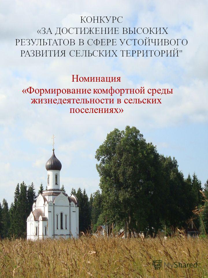 Номинация « Формирование комфортной среды жизнедеятельности в сельских поселениях »