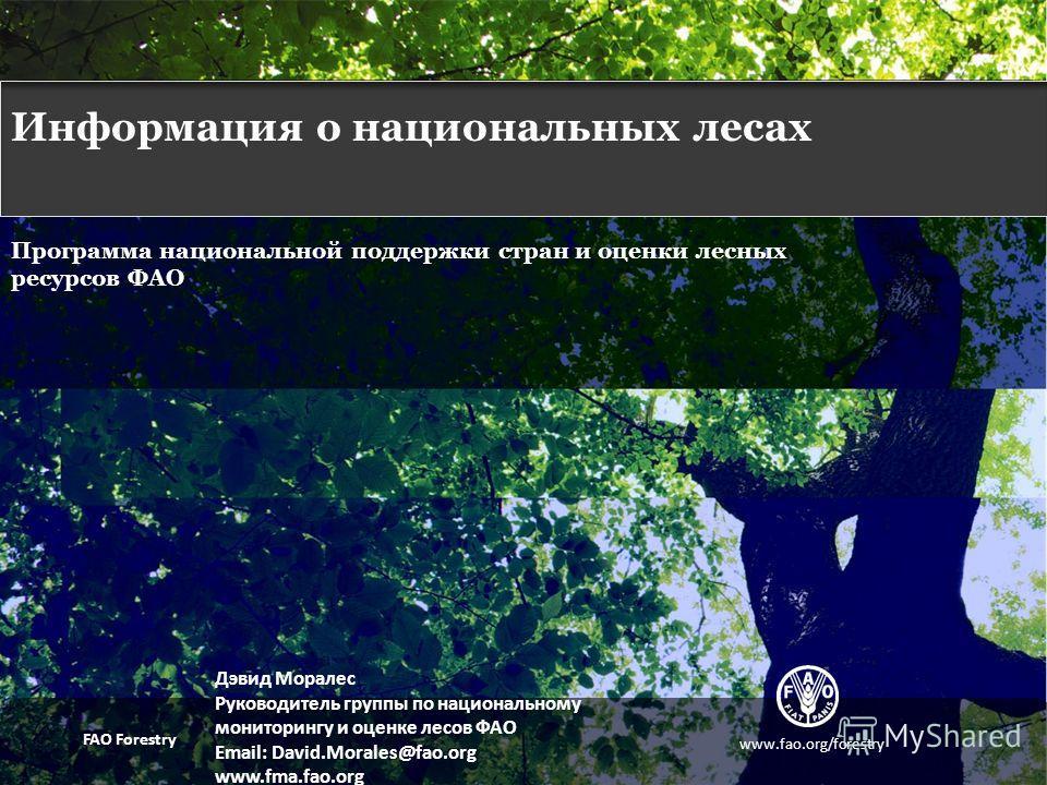 FAO NATIONAL COUNTRY SUPPORT AND THE FRA PROGRAMME Программа национальной поддержки стран и оценки лесных ресурсов ФАО Дэвид Моралес Руководитель группы по национальному мониторингу и оценке лесов ФАО Email: David.Morales@fao.org www.fma.fao.org www.