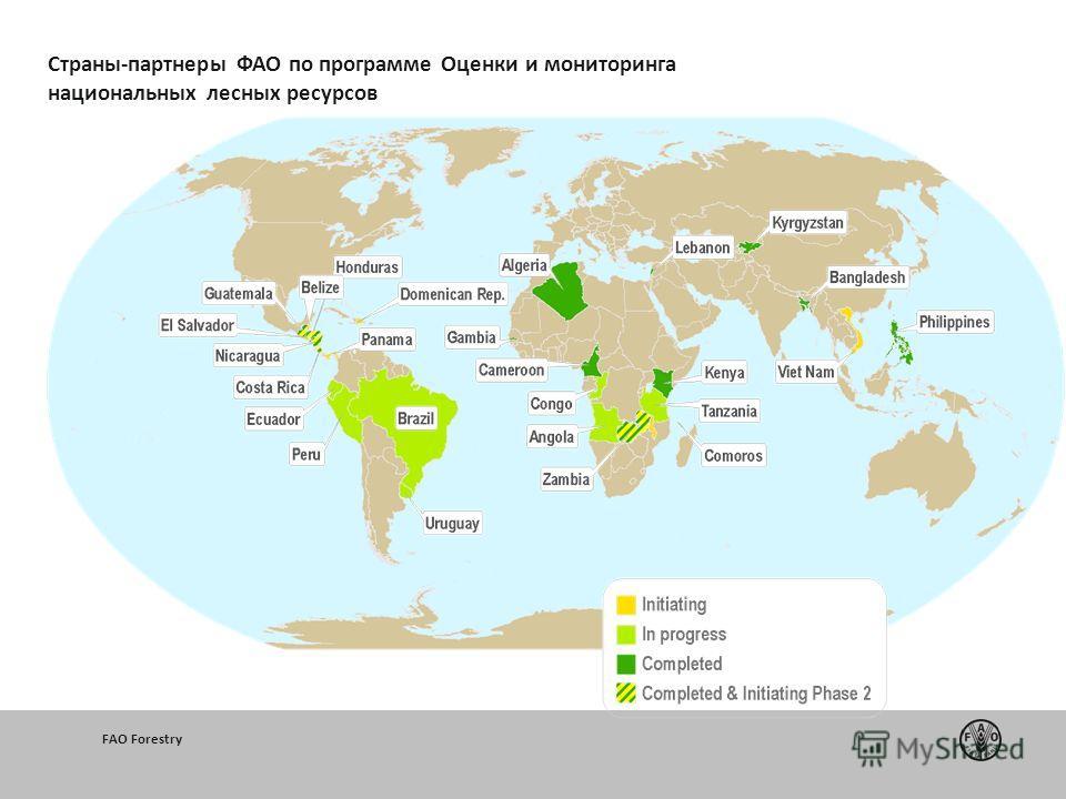 200 20102011 FAO Forestry Страны-партнеры ФАО по программе Оценки и мониторинга национальных лесных ресурсов