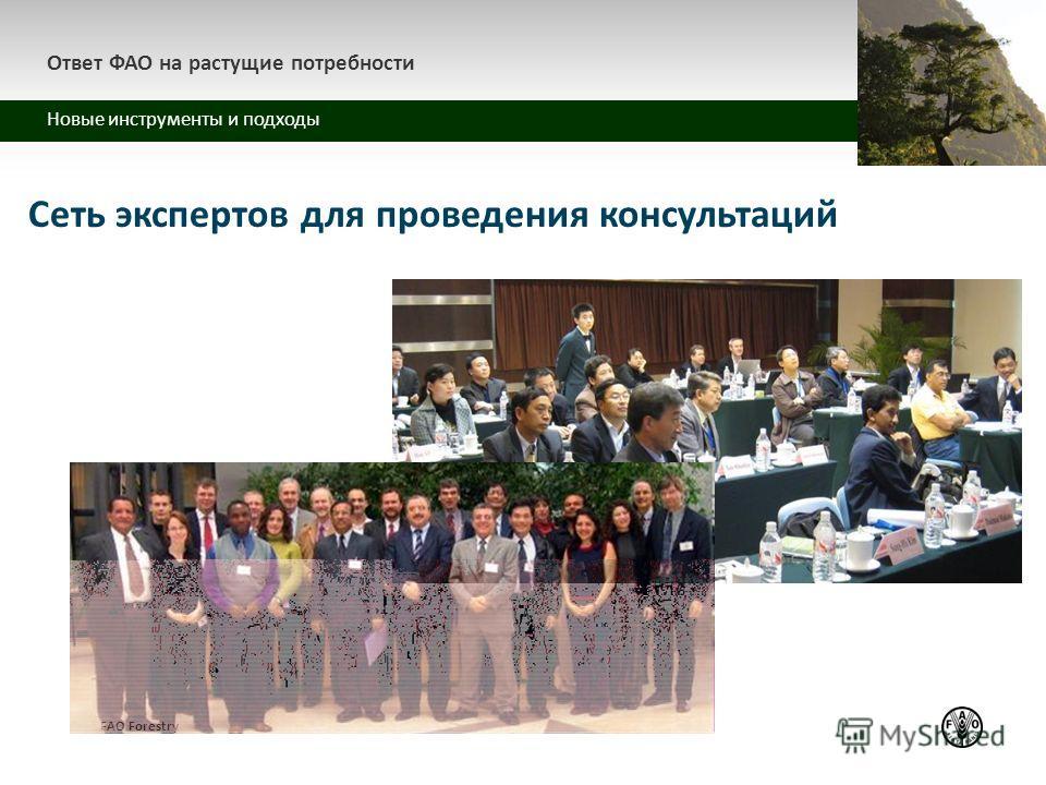 z Ответ ФАО на растущие потребности Новые инструменты и подходы FAO Forestry Сеть экспертов для проведения консультаций