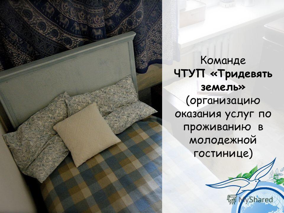 Команде ЧТУП «Тридевять земель» (организацию оказания услуг по проживанию в молодежной гостинице).