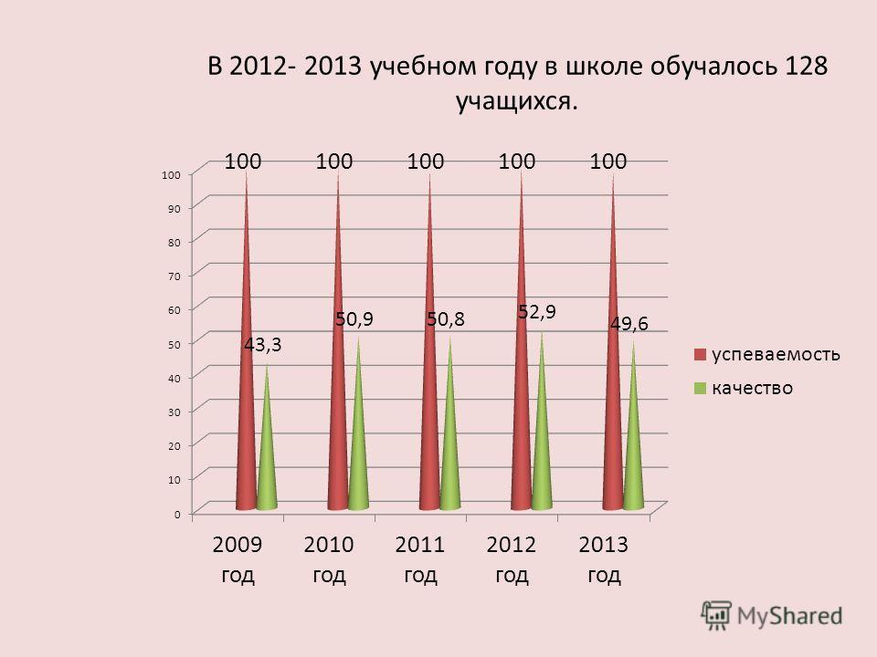 В 2012- 2013 учебном году в школе обучалось 128 учащихся.