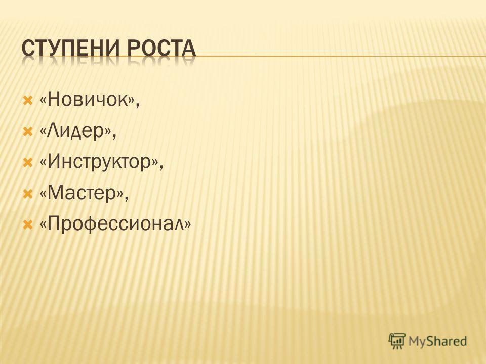 «Новичок», «Лидер», «Инструктор», «Мастер», «Профессионал»