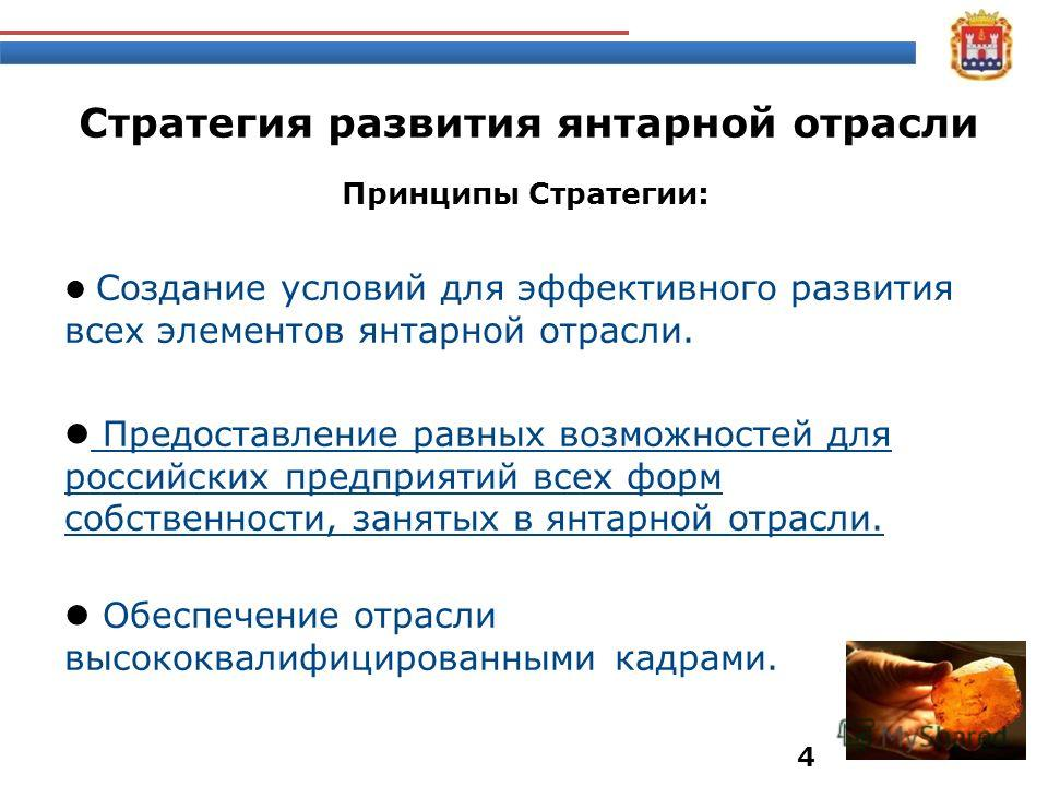 Принципы Стратегии: Создание условий для эффективного развития всех элементов янтарной отрасли. Предоставление равных возможностей для российских предприятий всех форм собственности, занятых в янтарной отрасли. Обеспечение отрасли высококвалифицирова
