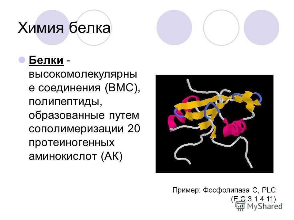 Методы биохимических исследований (продолжение) Изучение гомогенатов работа с бесклеточными препаратами можно удалять или добавлять различные вещества и наблюдать за результатами можно фракционировать различные органеллы путем дифференциального центр