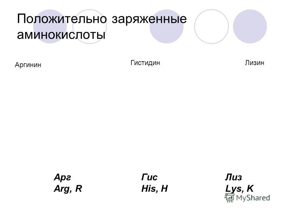 Отрицательно заряженные аминокислоты Асп Asp, D Глу Glu, E Аспарагиновая кислотаГлутаминовая кислота