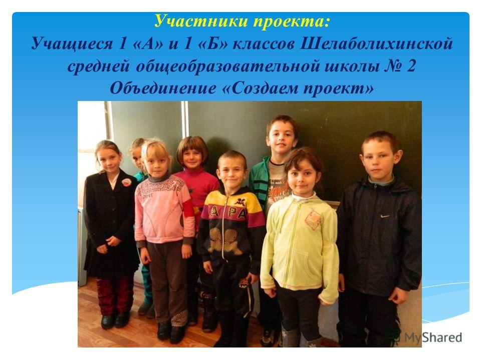 Участники проекта: Учащиеся 1 «А» и 1 «Б» классов Шелаболихинской средней общеобразовательной школы 2 Объединение «Создаем проект»