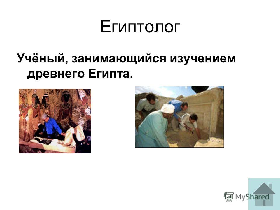 Египтолог Учёный, занимающийся изучением древнего Египта.