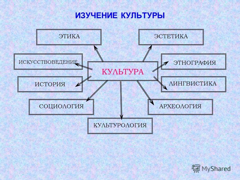 Социология культуры культурология