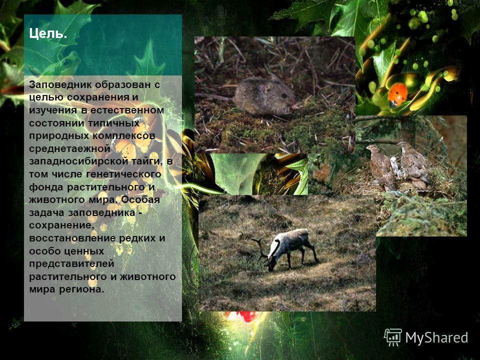 Цель. Заповедник образован с целью сохранения и изучения в естественном состоянии типичных природных комплексов среднетаежной западносибирской тайги, в том числе генетического фонда растительного и животного мира. Особая задача заповедника - сохранен