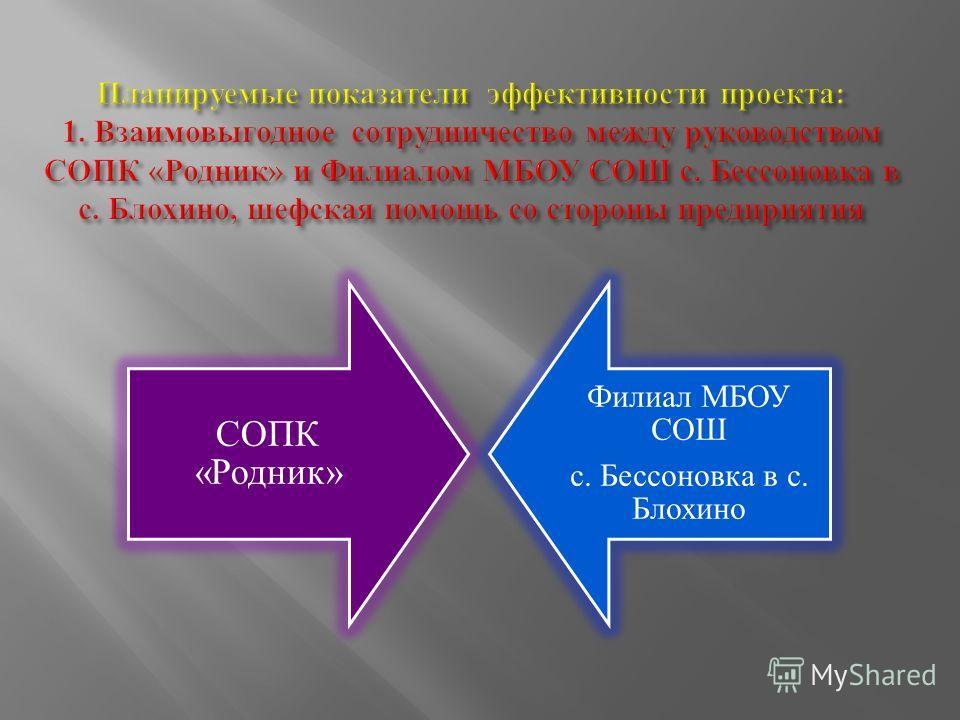 СОПК «Родник» Филиал МБОУ СОШ с. Бессоновка в с. Блохино