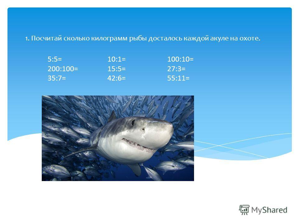 1. Посчитай сколько килограмм рыбы досталось каждой акуле на охоте. 5:5=10:1=100:10= 200:100=15:5=27:3= 35:7=42:6=55:11=
