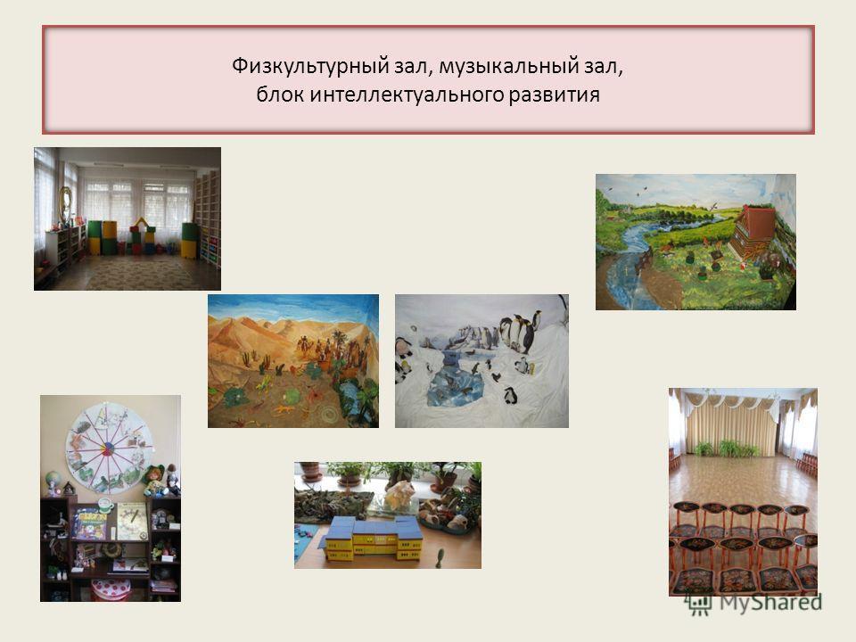 Физкультурный зал, музыкальный зал, блок интеллектуального развития