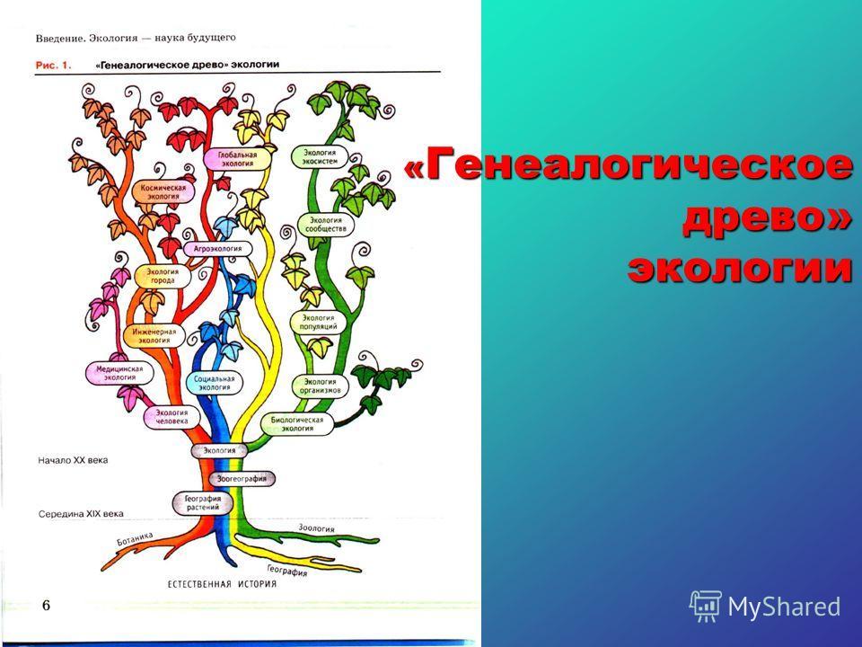 « Генеалогическое древо» экологии