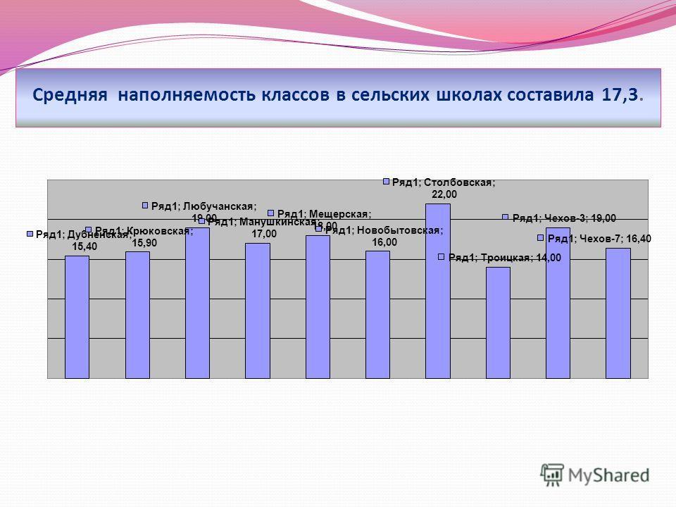 Средняя наполняемость классов в сельских школах составила 17,3.