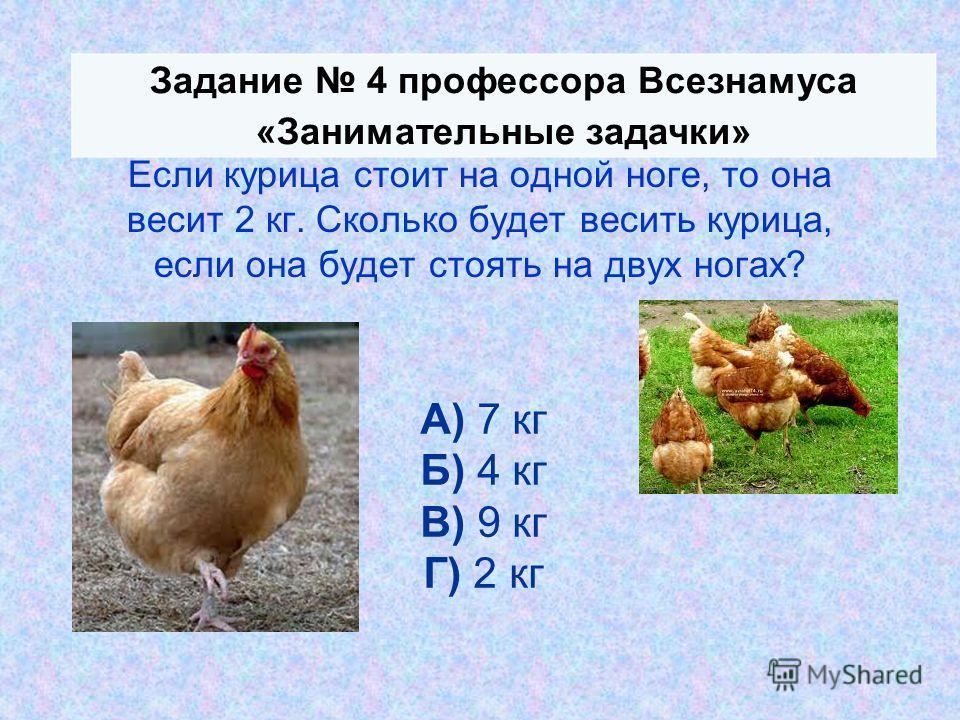 Если курица стоит на одной ноге, то она весит 2 кг. Сколько будет весить курица, если она будет стоять на двух ногах? А) 7 кг Б) 4 кг В) 9 кг Г) 2 кг Задание 4 профессора Всезнамуса «Занимательные задачки»