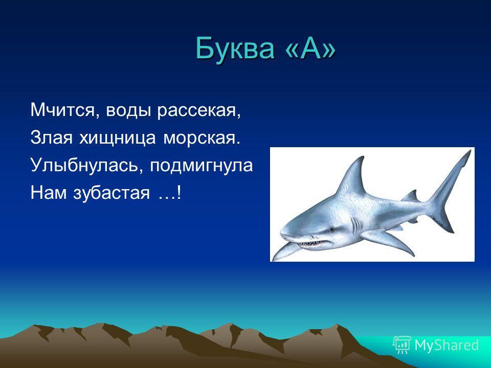 Буква «А» Мчится, воды рассекая, Злая хищница морская. Улыбнулась, подмигнула Нам зубастая …!