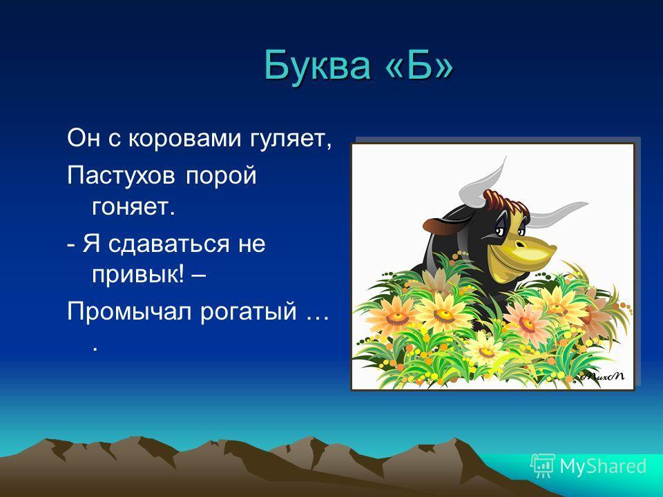 Буква «Б» Он с коровами гуляет, Пастухов порой гоняет. - Я сдаваться не привык! – Промычал рогатый ….