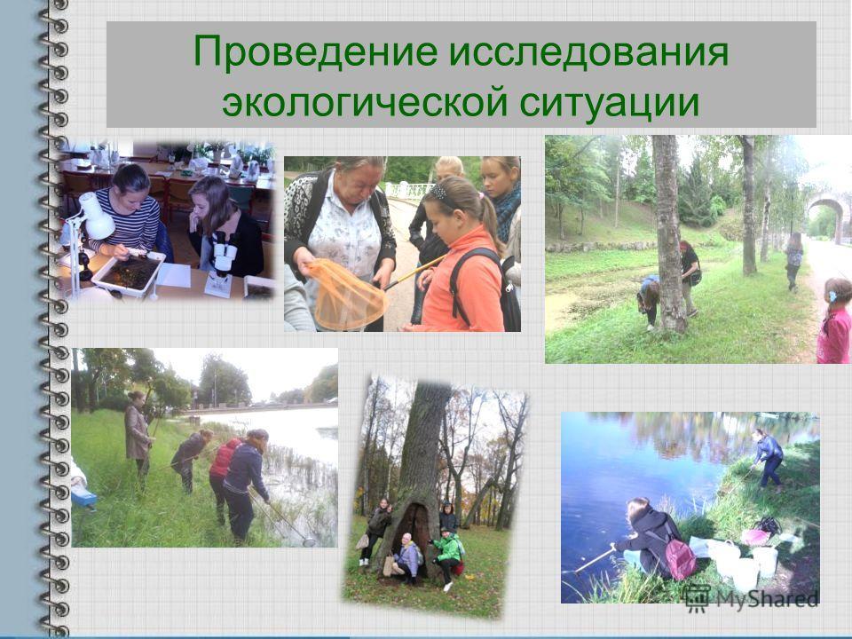 Проведение исследования экологической ситуации