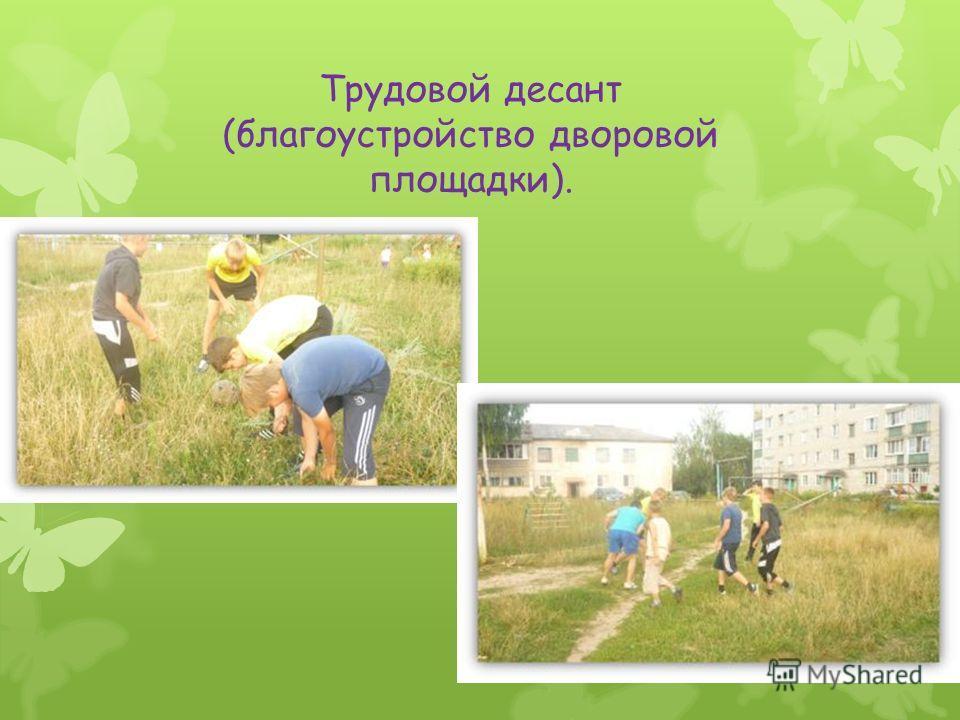 Трудовой десант (благоустройство дворовой площадки).