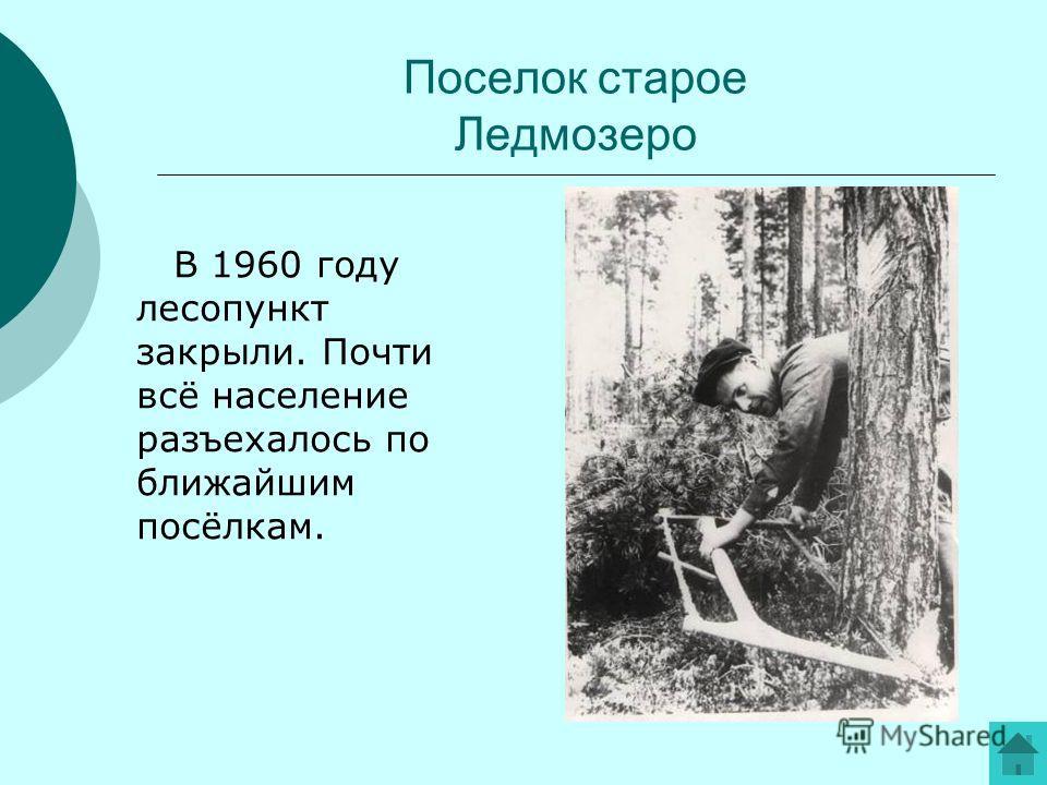 Поселок старое Ледмозеро В 1960 году лесопункт закрыли. Почти всё население разъехалось по ближайшим посёлкам.