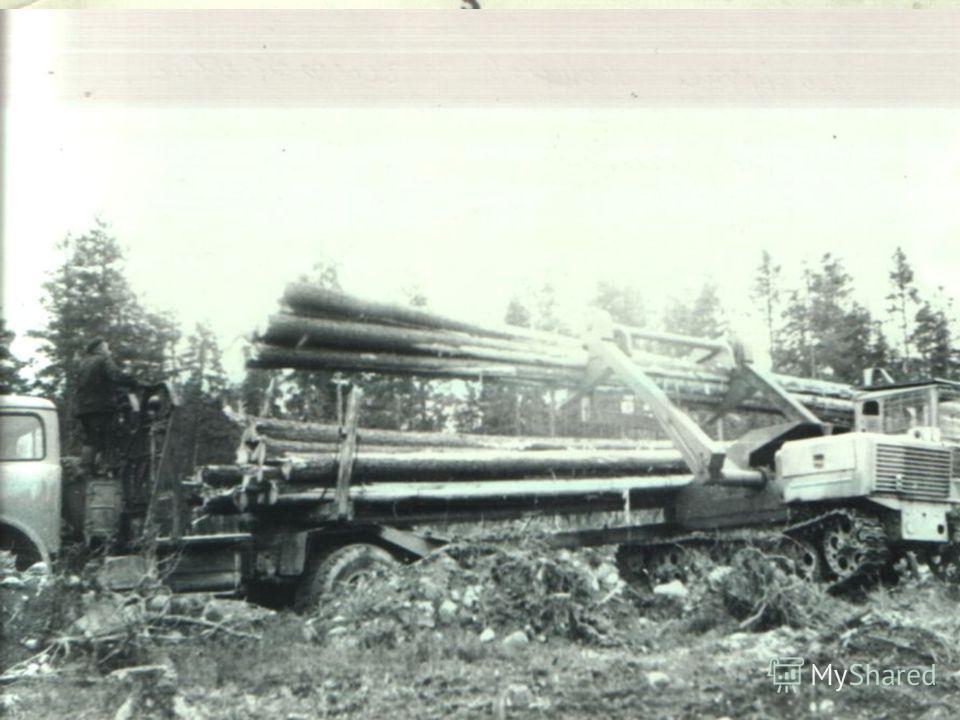 Осенью 1964 года организовали Ковдозерский (ныне Ледмозерский) лесозаготовительный пункт и на временных эстакадах были разделаны первые хлысты. Ледмозерская древесина стала поступать на целлюлозно - бумажные и деревообрабатывающие комбинаты Карелии.