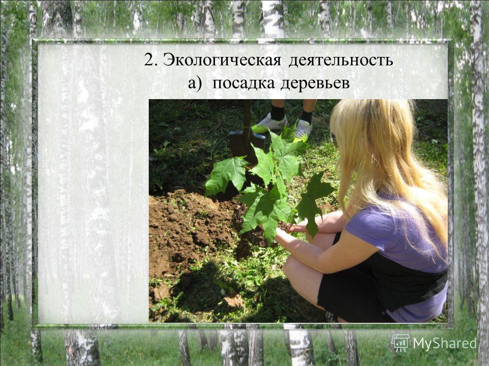 2. Экологическая деятельность а) посадка деревьев