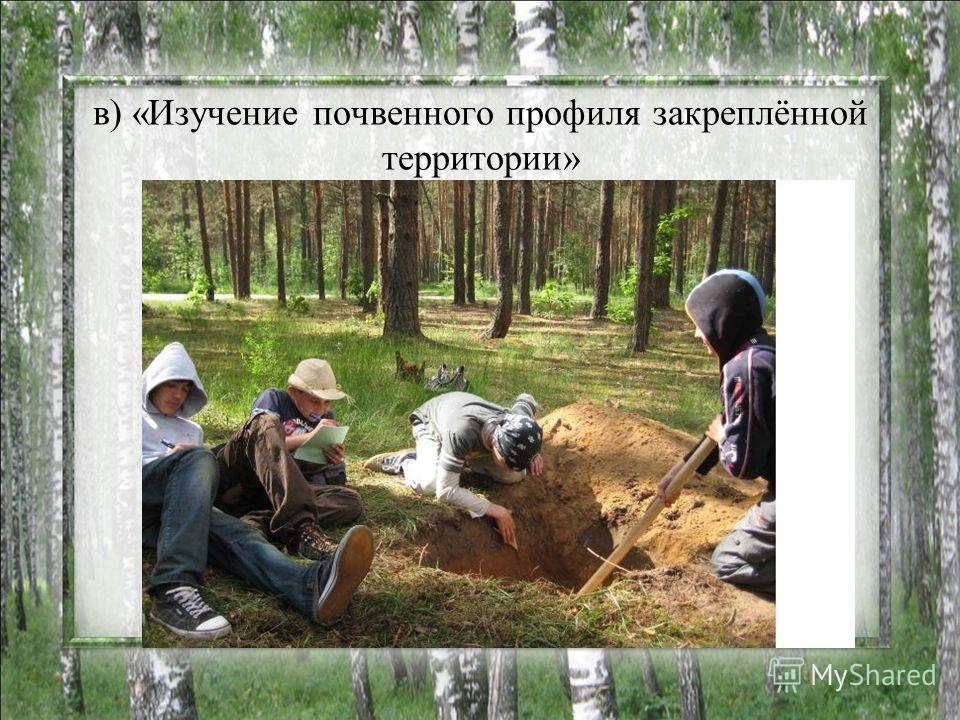 в) «Изучение почвенного профиля закреплённой территории»
