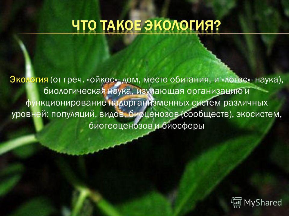 Экология Экология (от греч. «ойкос»- дом, место обитания, и «логос»- наука), биологическая наука, изучающая организацию и функционирование надорганизменных систем различных уровней: популяций, видов, биоценозов (сообществ), экосистем, биогеоценозов и
