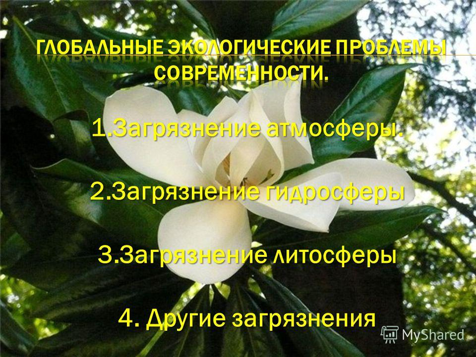 1.Загрязнение атмосферы. 2.Загрязнение гидросферы 3.Загрязнение литосферы 4. Другие загрязнения
