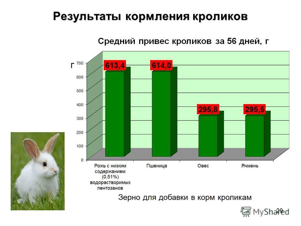 Результаты кормления кроликов 29