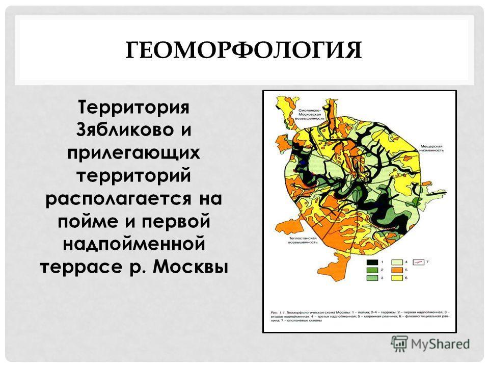 ГЕОМОРФОЛОГИЯ Территория Зябликово и прилегающих территорий располагается на пойме и первой надпойменной террасе р. Москвы
