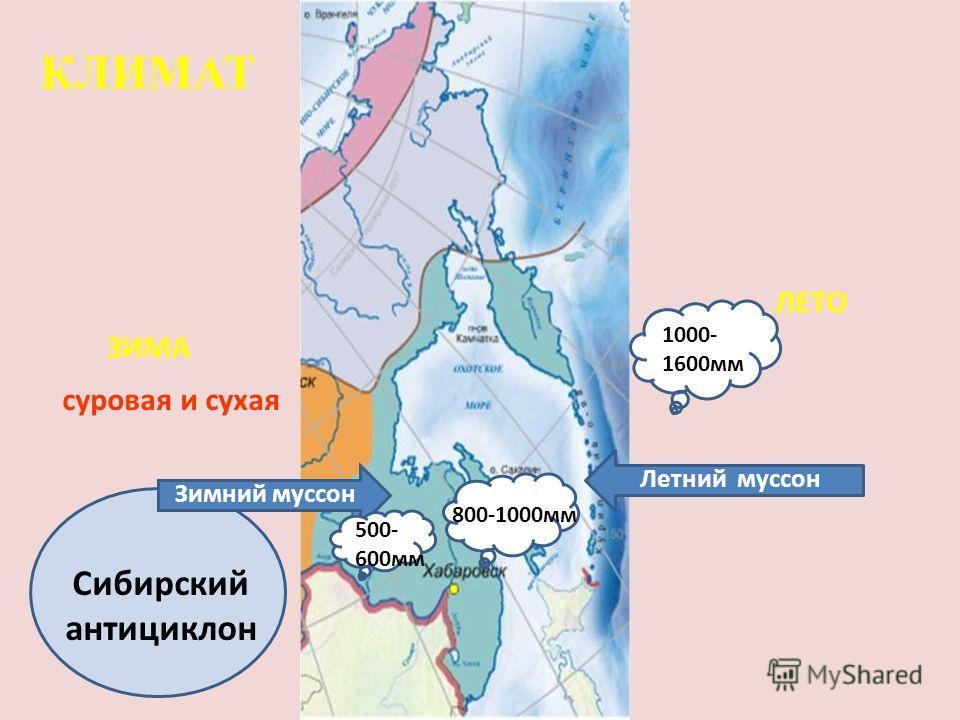 Сибирский антициклон ЗИМА ЛЕТО Летний муссон Зимний муссон КЛИМАТ 800-1000мм 500- 600мм 1000- 1600мм суровая и сухая