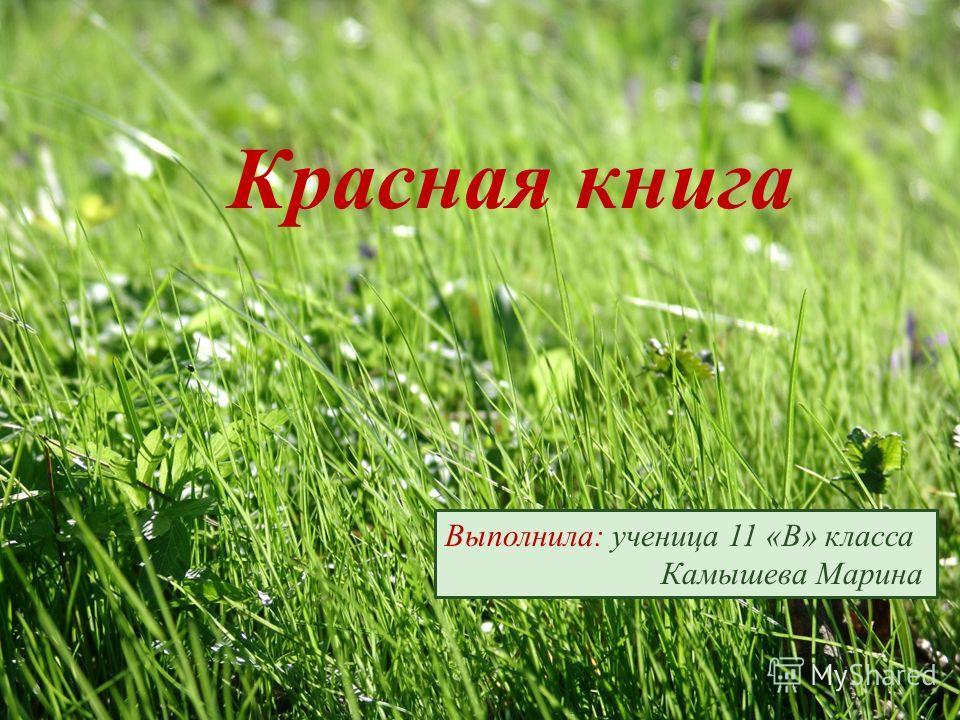 Красная книга Выполнила: ученица 11 «В» класса Камышева Марина