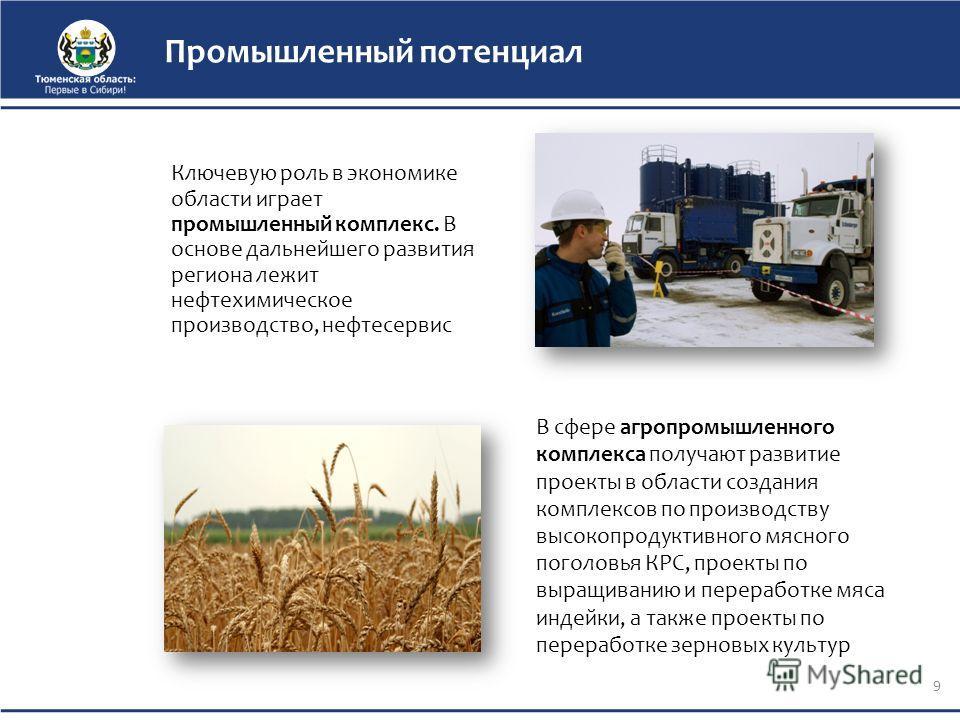 Промышленный потенциал Ключевую роль в экономике области играет промышленный комплекс. В основе дальнейшего развития региона лежит нефтехимическое производство, нефтесервис 9 В сфере агропромышленного комплекса получают развитие проекты в области соз